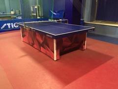 Теннисный стол San El Veric Centerfoid
